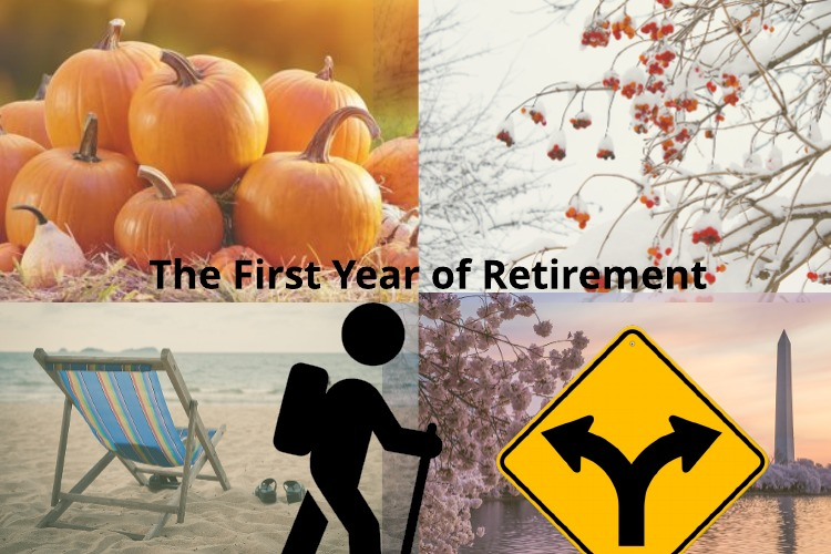 Ready to Retire?  A Glance at the First Year of Federal Retirement