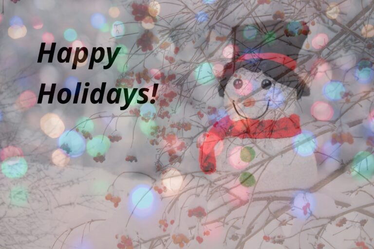 Happy Holidays from Serving Those Who Serve